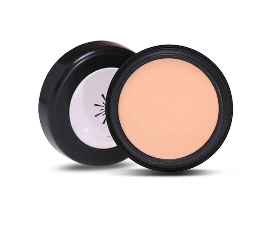 MISSHA THE STYLE PERFECT CONCEALER LIGHT BEIGE
